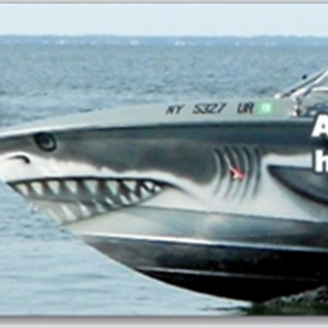 Davina Dobie painted great white shark boat advertisement hamptons new york.jpg